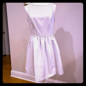 Beautiful Kenzie Fit and Flare Pindot Dress